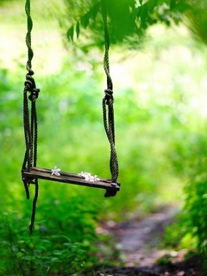 Secret Gardens, Gardens Swings, Green, Beautiful, Summer, Things, Places, Trees Swings, Photography