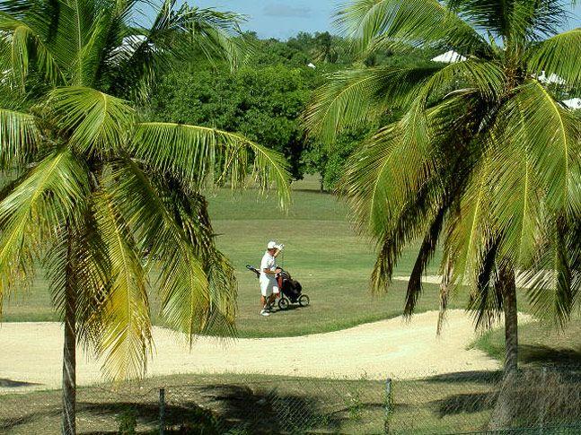 golfing in  Guadeloupe | Hébergement de Prestige en Guadeloupe villa Bonheur le luxe au bord ...