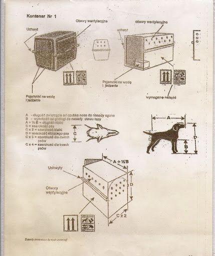 Jak prawidłowo dobrać klatkę do psa? - Szkolenie psów metodami pozytywnymi