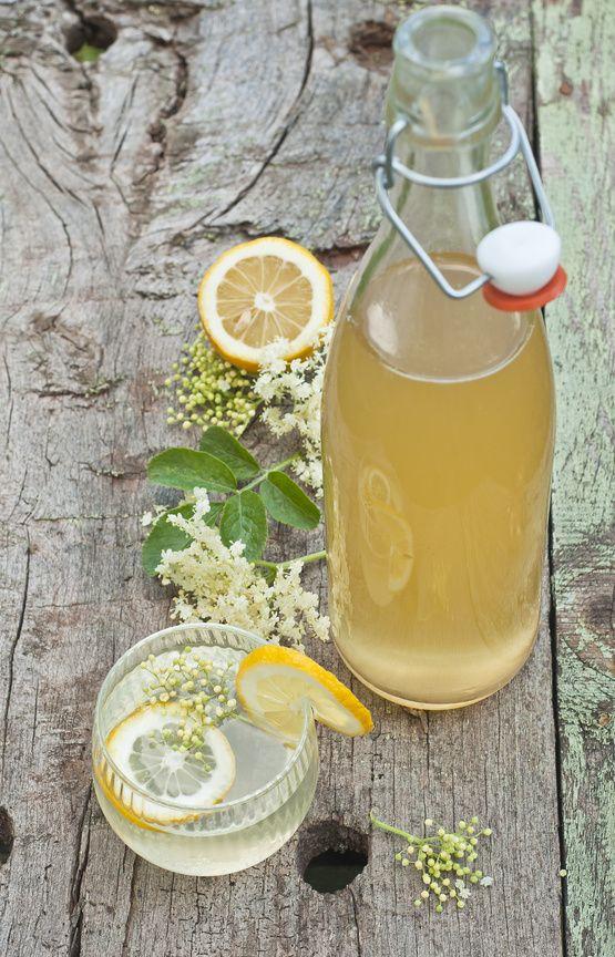 Der Holunder blüht und schmeckt - via Gartenzauber // Tollle Rezepte: für einen ausgefallenen Holunder-Gelee, gebackene Blüten, Likör und Limonade.