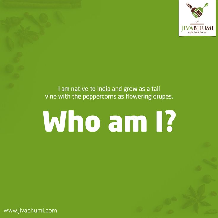 Guess this famous spice, you can find in any kitchen in every corner of the world. Stock your kitchen with naturally cultivated spices and herbs from #Jivabhumi. Buy now: http://bit.ly/shop_jivabhumi #FarmFood #NaturalFood #SafeFood #Spices #GuessTheSpice #FoodRiddle