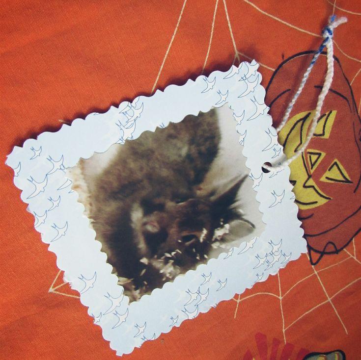 Wir bereiten uns mit den Kindern auf Samhain vor. Unter anderem mit Anhängern für das Ahnenbäumchen.