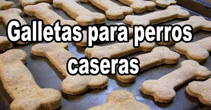 ¡Estas galletas para perros son facilísimas de preparar y a ellos les encanta!