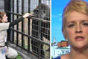 People Say This Former Zookeeper's Take On The Gorilla Death Is Perfect