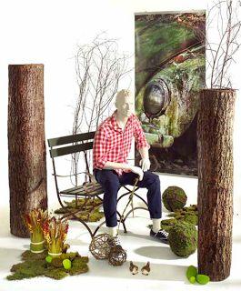 Creation Vetrina: Idee vetrina autunno 2013: Urban Nature