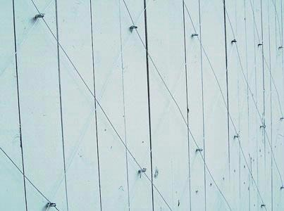 adding eye hooks & wire to your wood privacy fence so vines have something to cling onto.