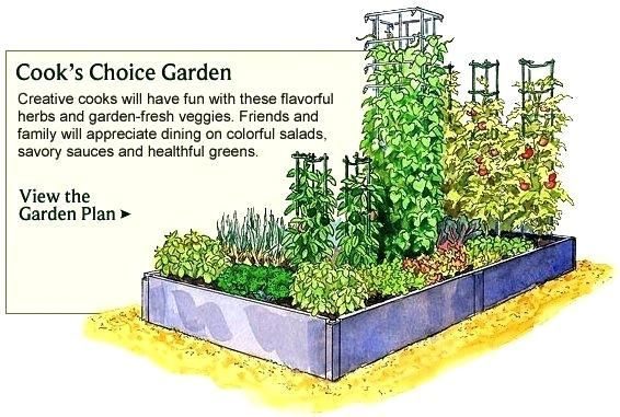 Vegetable Garden Layout Ideas Vegetable Garden Planner Layout