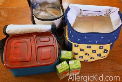 The Allergic Kid: Traveling with Food Allergies: Packing Meals for Three Days