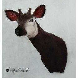 Okapi artificial
