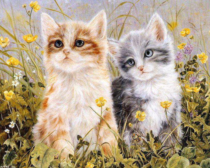 Скачать обои домашние животные, два котенка, Shirley Deaville 1280x1024