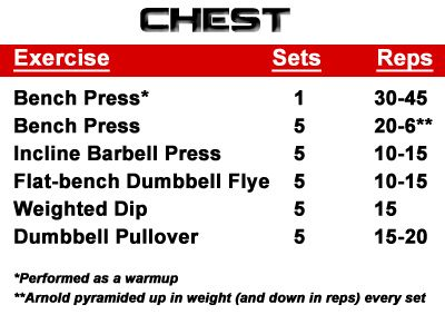 arnold workout chart: 9 best muscle images on pinterest work outs exercises and workouts
