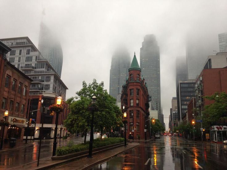 An eerie but stunning early-morning fog blankets the city