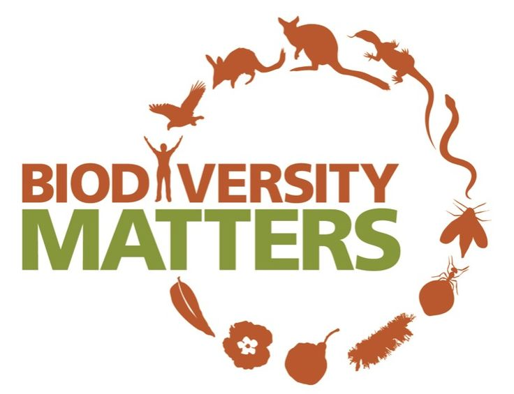 Biodiversity is very important and must be protected because  ~ the more species of plants, the more diversity of crops ~ more species diversity ensures natural sustainability for all life  ~ healthy ecosystems can better recover from disasters
