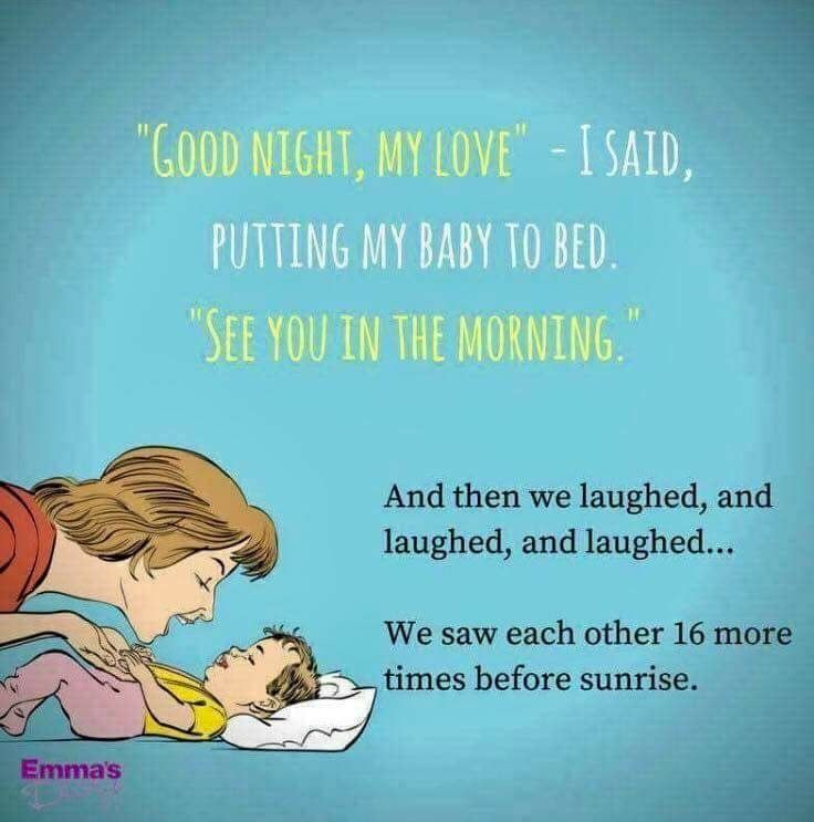 There S No Laughing No Sleeping But Always Say Good Night Anyways Parents Quotes Funny Mommy Humor Mom Humor
