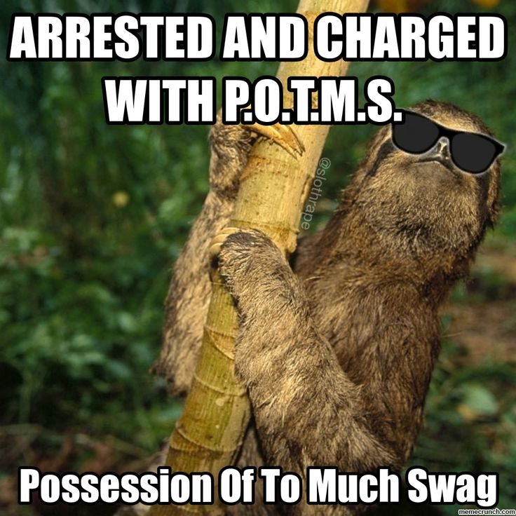 Sloth Meme | Generate a meme using Bad Ass Sloth