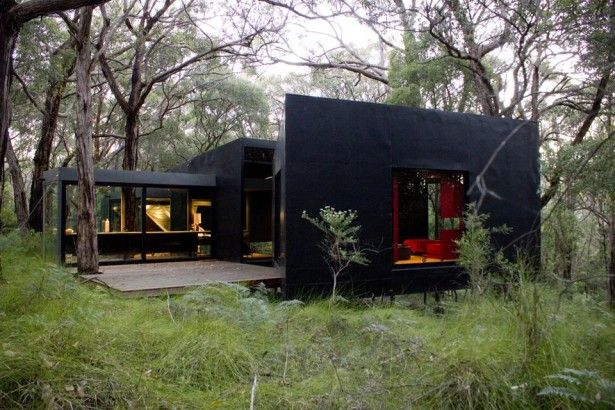 Super dark house makes red pop and pairs so nice with greenery