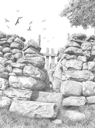 Pencil Drawing of a Squeeze Stile by artist Nolon Stacey.  Visit www.nolonstacey.com to view more of his work.