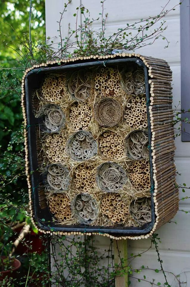 bee hotel | How to make a bee hotel