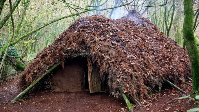 """Survival shelters protect you and help regulate body heat. Learn how to pick the best spot and how to build these four different types of shelters.  Surviving in the wild isn't a TV show, it's tough.You have to maintain your body heat and health even in the extreme conditions of survival. Nature's #1rule, the """"survival of the fittest"""", also implies. You have to be at the top of your game, both in terms of thinking and taking quick actions. When you are alone in the wilderness and yourfun…"""