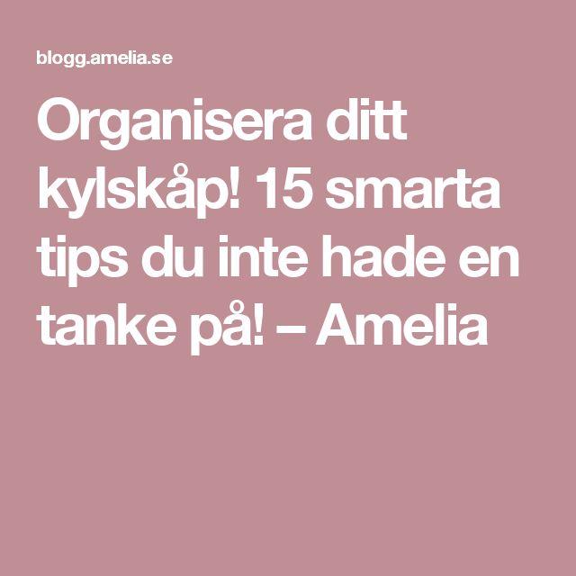 Organisera ditt kylskåp! 15 smarta tips du inte hade en tanke på! – Amelia