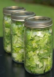 Wash jars and set them out to dry Wash and chop head of lettuce Stuff jars with lettuce (the fuller, the better) Dampen a paper towel and fold it up small enough to fit into the mouth of the jar. Lay paper towel over the top of lettuce and secure lid. Turn upside down and store in the fridge for up to a month!! When you're ready to eat, throw out the paper towel and prep as you like!
