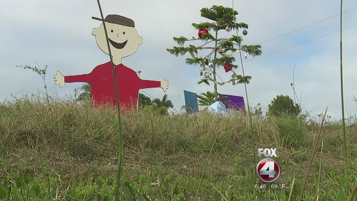 Scraggly tree in an empty lot turned into touching Charlie Brown Christmas display in Florida