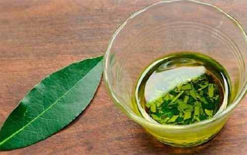 Combat Insomnia, High Blood Pressure, Sugar And Fat In The Blood With These Leaf!
