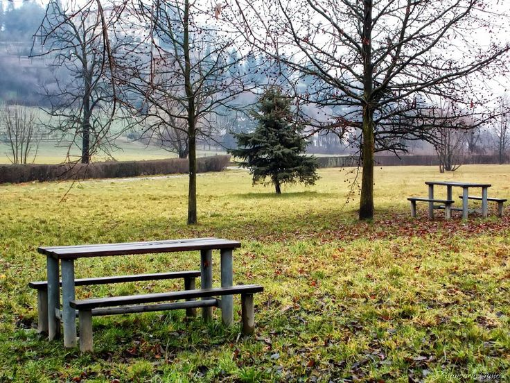 Empty benches by Giancarlo Gallo