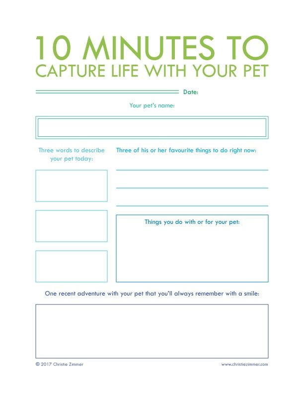 2306 best Business images on Pinterest Project management - business meeting minutes template word