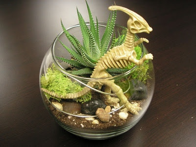 Dinosaur and succulent centerpieces cute for the kid's tables : )
