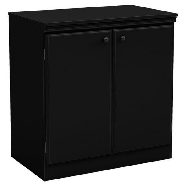 Caines 2 Door Storage Cabinet Office Storage Cabinets Office Storage Cabinets Storage Cabinet Storage Cabinets