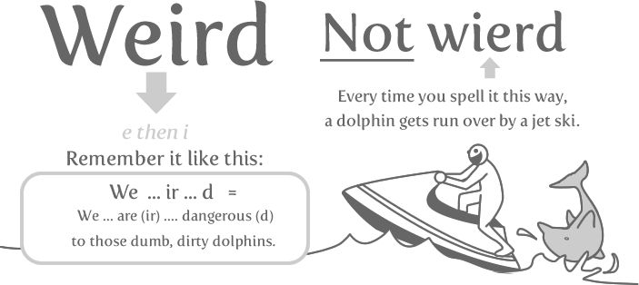 :) poor dolphins