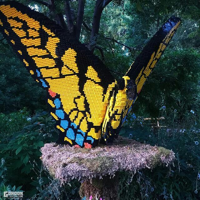 Denver Zoo Lego Butterfly
