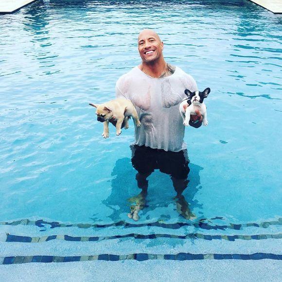 La famille de Dwayne « The Rock » Johnson est en deuil | HollywoodPQ.com