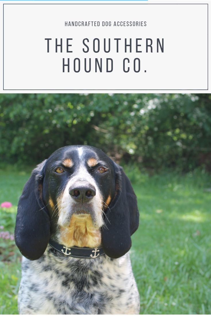 The Southern Hound Co Creates Handcrafted Dog Accessories