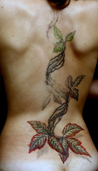 17 best images about tattoos on pinterest watercolors for Poison ivy vine tattoos