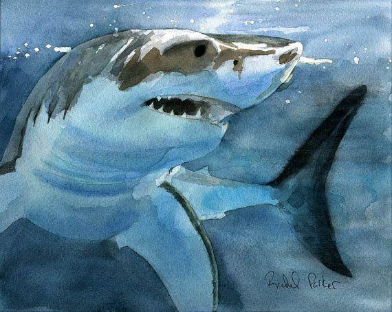 Great White Shark -  Rachel Parker -  Watercolor