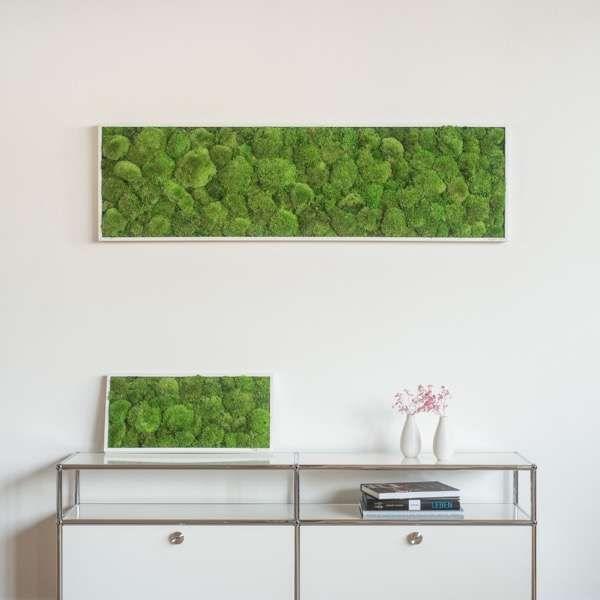 7 besten moss pictures Bilder auf Pinterest Minimalismus, Moos - ideen moderne designtreppen individuellen wohnstil
