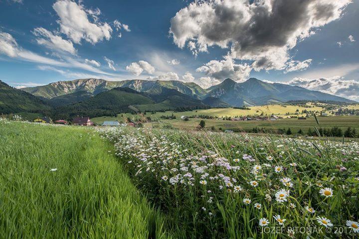 Čarovné prechádzky prírodou...  foto Jozef Pitoňák - Fotograf