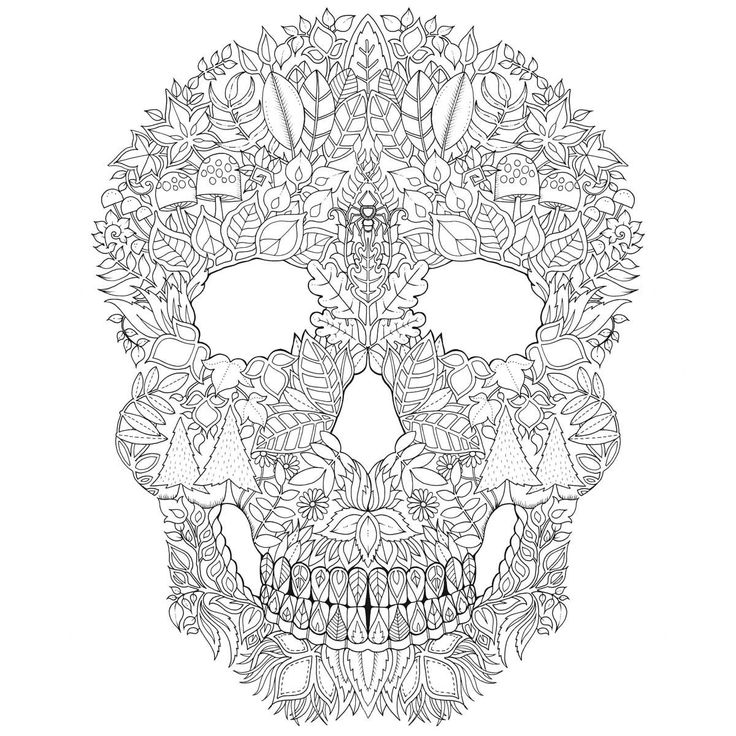 1435840483524 1970375793 Jpg Gallerybig Iext29471337 1200x Adult ColoringColoring PagesColoring BooksSecret GardensZentanglesSkeletonsSkullsDoodles
