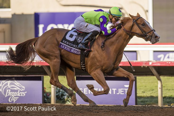 e Five Racing Thoroughbreds and Stonestreet Stables' Good Magic tops a list of 36 3-year-olds nominated to the $400,000 Xpressbet.com Fountain of Youth (G2) March 3 at Gulfstream Park. The 1 1/16-mile Fountain of Youth, a prep for the $1 million Xpressbet.com Florida Derby (G1) April 1 at Gulfstream Park and the 2018 Triple Crown, …