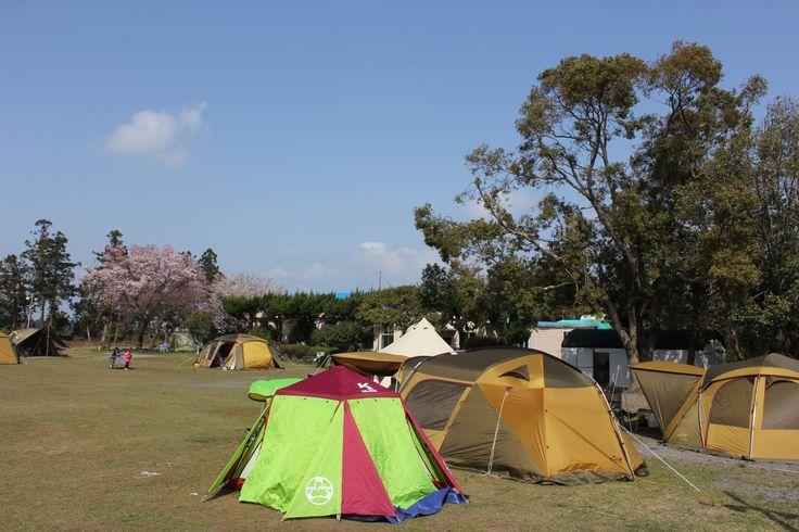 삼무 야영장은 초등학교 폐교를  활용한 캠핑장입니다