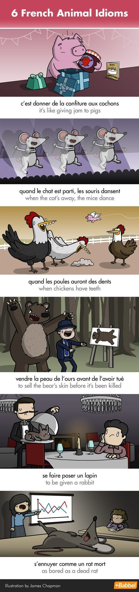 French idioms about animals.