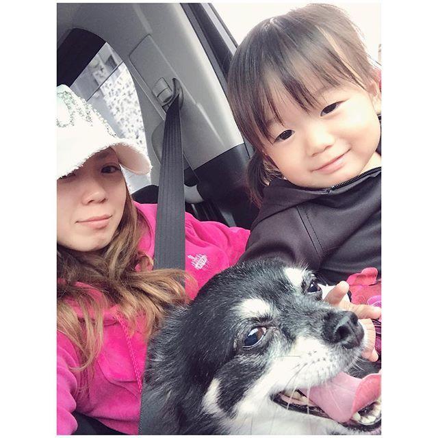 #娘 と #愛犬 ☺️💓 ・ 愛犬が大好きな #娘ちゃん💗でも愛犬は娘が嫌い😩💦 ・ なんでかなぁー😰💡‼️ ・ ・ ・ #愛娘#次女#女の子#我が家の姫#犬#いぬ#チワワ#ちわわ#チワワ部#rady#レディ#キャップ#帽子#セットアップ#ベロア#ベロアジャージ#ベロアセットアップ#リゾフラ#ちびrady#リゾフラ#リゾートフラワー#三十路#30歳#アラサー#二児の母#親子