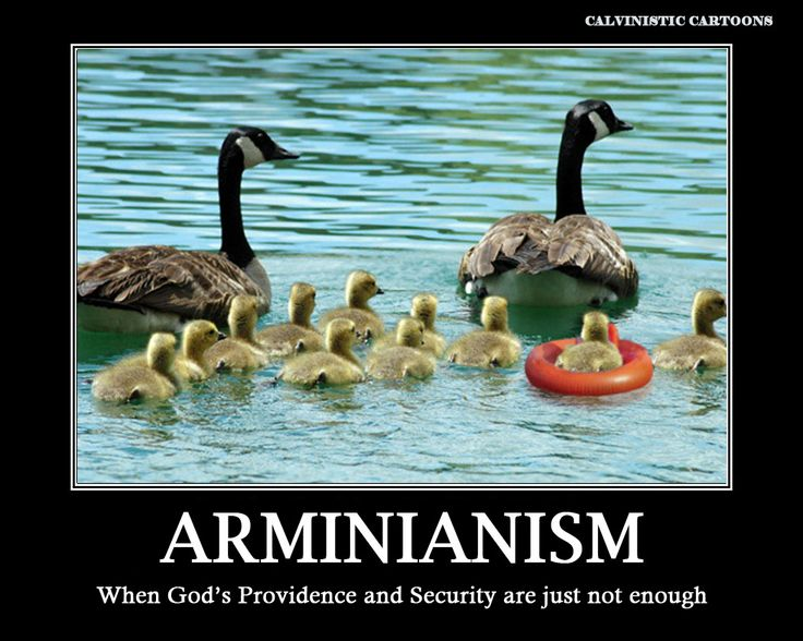 Calvinistic Cartoons: Arminianism Poster of the Month