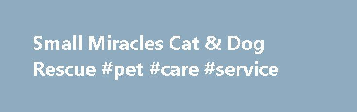 Small Miracles Cat & Dog Rescue #pet #care #service http://pet.remmont.com/small-miracles-cat-dog-rescue-pet-care-service/  What's New Donate via Amazon.com If you'd like to donate to the homeless cats and dogs awaiting adoption at Small Miracles, consider shopping online for the animals. We have started a wish list at Amazon.com. Items range in price from $5 on up. We've listed necessities, as well as some creature comforts and special treats for our furry friends. Items can be purchased…