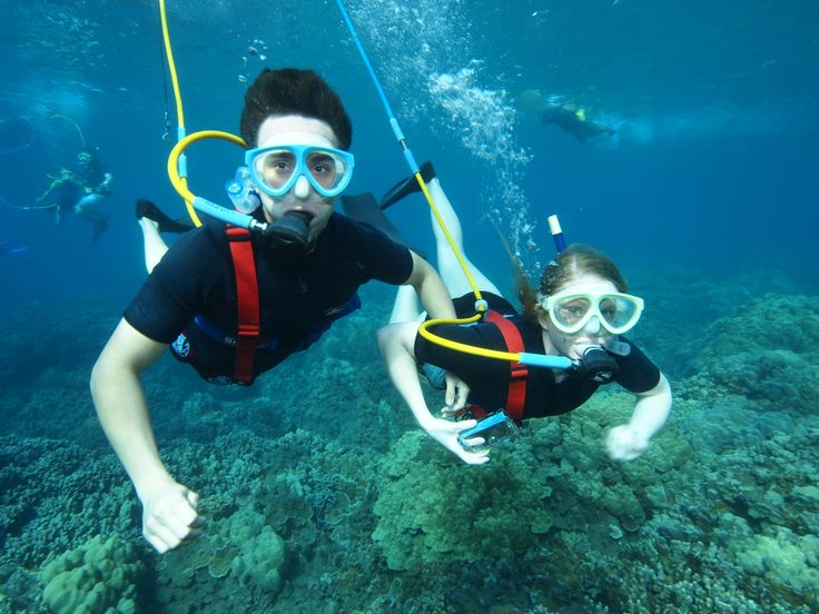 Another fab experience from the Four Winds II Snorkeling Tour