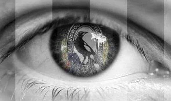 My life, Collingwood Football Club.
