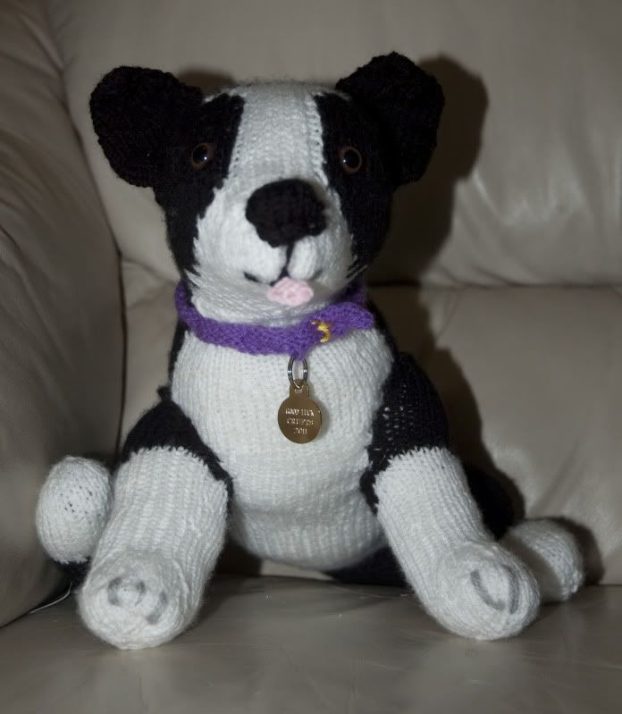 Knitting Pattern For Border Collie Dog : 88 best images about Border Collie on Pinterest Sheep dogs, Pet memorial gi...