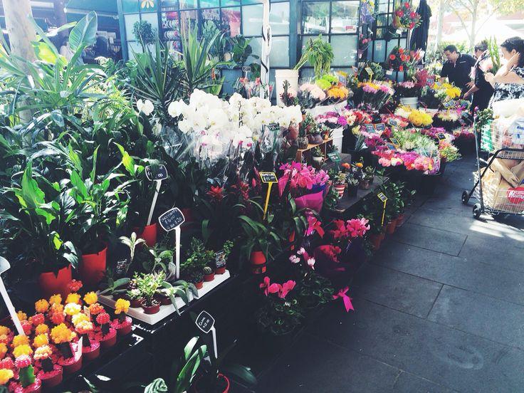 FLOWER POWER QV Market  Melbourne